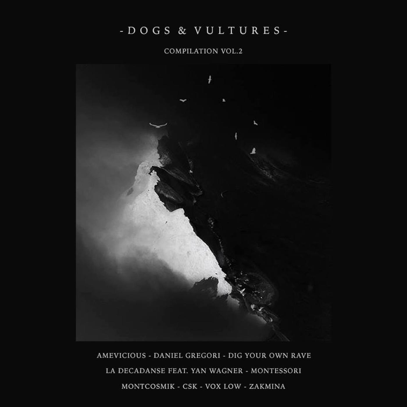 PREMIERE – Vox Low – Listen To The Cheerer (Dogs & Vultures)
